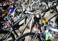 bikes at KAUST